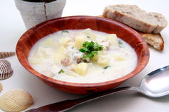 Fishsoup Royalty Free Stock Photo