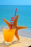 Fishstar,杯反对海的橙色鸡尾酒 免版税库存照片