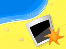 fishstar foto för strandkust Arkivfoto