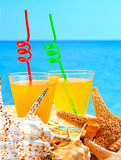 Fishstar, shells and two glasses of orange cocktail against the Royalty Free Stock Images