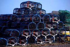 Fishtraps Stock Foto