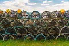 Fishtraps på gräset Arkivfoto