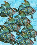 Fishy, Fishy Royalty Free Stock Photo