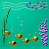 Fishy view. Bright tropical fish swim colorful illustrated frame Royalty Free Stock Image