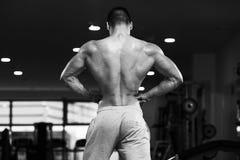 Fisicamente uomo che mostra la sua parte posteriore ben preparata fotografia stock