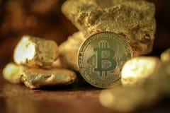 Fisico medica del bitcoin dell'oro e grani della pepita di oro Grido di estrazione mineraria di concetto Immagini Stock