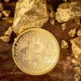 Fisico medica del bitcoin dell'oro e grani della pepita di oro Grido di estrazione mineraria di concetto Fotografie Stock Libere da Diritti