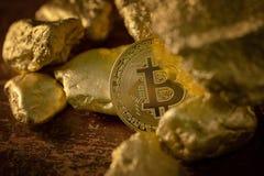 Fisico medica del bitcoin dell'oro e grani della pepita di oro Grido di estrazione mineraria di concetto Immagine Stock