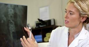Fisioterapeuta que muestra la radiografía a un paciente metrajes