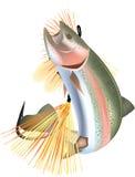 Fisköring Arkivfoton