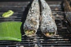 FISK FÖR ASIATISK MAT FÖR CAMBODJA KAMPONG THOM SALT arkivfoton