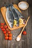Fisk för havsbas Fotografering för Bildbyråer
