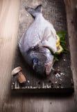 Fisk för havsbraxen Arkivfoto