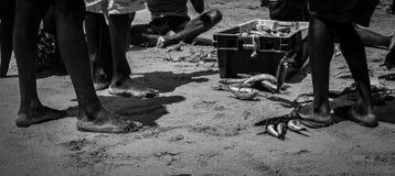Fisk för matställe i Nhambane fotografering för bildbyråer