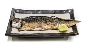 Fisk-grillat Arkivfoto