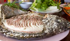fisk grillat salt Arkivfoto