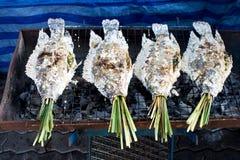 fisk grillat salt Fotografering för Bildbyråer