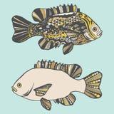Fisk Hand-dragen fantasifisk med den etniska klottermodellen stock illustrationer