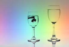 Fisk, i att dricka exponeringsglas som söker efter löneförhöjning- och förbättringsbegrepp arkivfoto