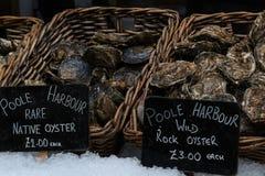 Fisk i matmarknad Arkivfoto