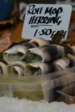 Fisk i matmarknad Royaltyfri Foto