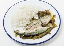 Fisk i vinrankasidor Arkivbilder