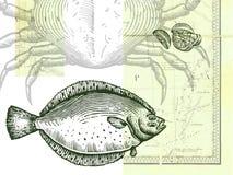 Fisk; krabba och skivad citron; med en översikt Stock Illustrationer