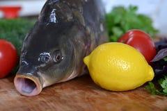 Fisk med nya grönsaker och örter Royaltyfri Bild