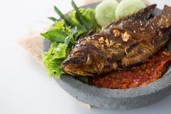 Fisk med sambal för sås för varm chili Arkivbild