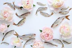 Fisk- och blommabakgrund Royaltyfri Bild