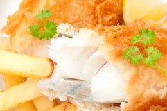 Fisk och chiper Royaltyfria Bilder