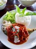 Fisk och curry med ris arkivbilder