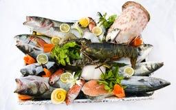 Fisk och skaldjur Fotografering för Bildbyråer