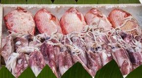 Fisk och tioarmad bläckfisk på skärm i is Royaltyfri Fotografi