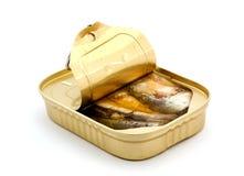 fisk på burk Royaltyfri Bild
