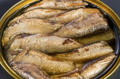 fisk på burk Rökt fisk i en järnkruka fotografering för bildbyråer