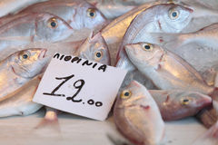 Fisk på den Aegina marknaden Arkivfoto