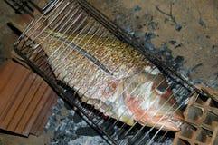 Fisk på galler arkivbild