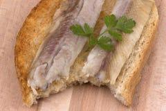 Fisk på rostat bröd Royaltyfri Fotografi