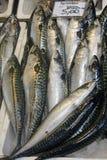 Fisk-shoppa Royaltyfri Fotografi