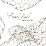 Fisk som fångas i det netto vektor illustrationer