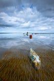Fisk som fångas i ett netto på en sandig strand royaltyfri bild