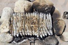Fisk som lagas mat på gallret i naturen för lunch arkivbilder