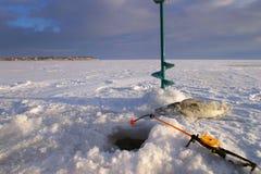 Fiska Royaltyfria Foton
