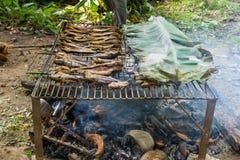 Fiska bevarande av bygd i Thailand vid brand och röka Royaltyfri Bild