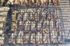 Fiska bevarande av bygd i Thailand vid brand och röka Arkivbild