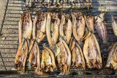 Fiska bevarande av bygd i Thailand vid brand och röka Arkivbilder