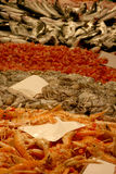fiska bläckfiskräkor Arkivbild