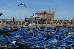 Fiska blåa fartyg Essaouira port i Marocko fotografering för bildbyråer