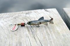 fiska drag Arkivfoto